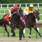 Tafsir Mimpi Togel Lengkap Tentang Pacuan Kuda